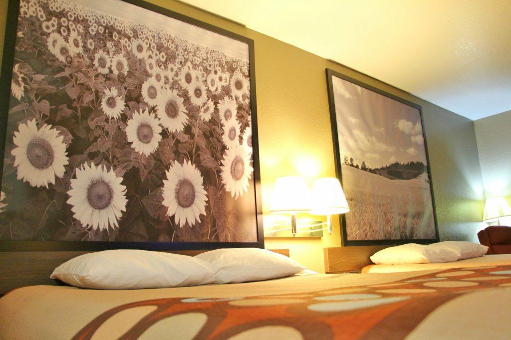 affordable hotel near ottawa kansas - Super 8 Ottawa Kansas